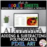 Google Sheets Digital Pixel Art Math Adding and Subtracting Polynomials