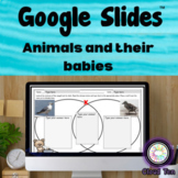 Google Slides - 1.10C Animals and their babies