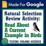 Google Slides Digital Natural Selection Worksheet and Text Evidence of Evolution