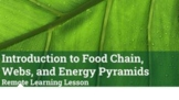 Google Slides: Food Web, Food Chain, and Energy Pyramid Lesson
