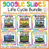 Google Slides Life Cycle Bundle