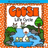 Goose Life Cycle {Ladybug Learning Projects}