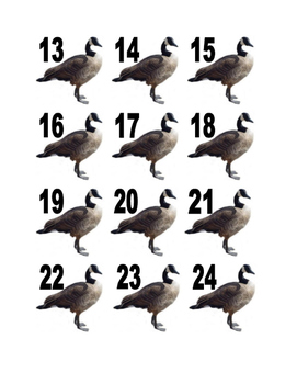 Goose Numbers for Calendar or Math Activity