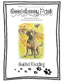Gooseberry Park Guided Reading Packet, CC-Aligned!