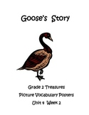 Goose's Story Picture Vocabulary Posters Grade 2 Treasures
