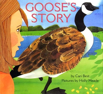 Goose's Story - Sequencing / Retelling