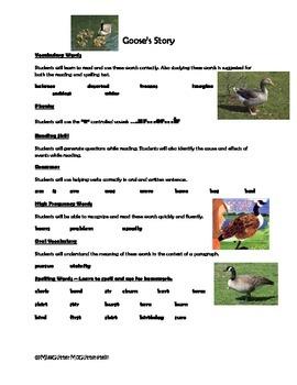 Goose's Story - Weekly Skill Sheet - 2nd Grade Treasures