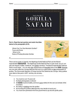 Gorilla Safari Minilesson with Informational Reading and Writing Tasks