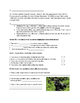 Gorilla Safari Minilesson with Informational Reading and W