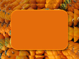 Photo Products - Gourds and Mini Pumpkins Theme