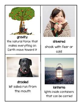 Gr. 2 Reading Street Unit 1 Vocabulary Cards