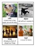 Gr. 2 Reading Street Unit 2 Vocabulary Cards