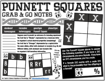 Grab-and-Go Notes: Punnett Squares
