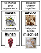 Grade 1 CKLA Domain 1: Fables and Stories Core Vocabulary Cards