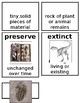 Grade 1 CKLA Domain 7: The History of the Earth Core Vocabulary Cards