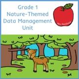 Grade 1 Data Management Unit Nature Theme (tallies surveys