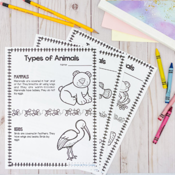 Grade 1 Needs and Characteristics of Living Things (English Version)