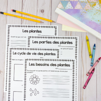 Grade 1 Needs and Characteristics of Living Things (French Version)