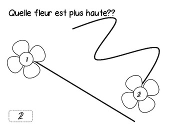 Grade 1- Non standard Measurement- French Immersion