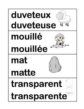 Grade 1 Structures & Materials French Word Wall with pictures