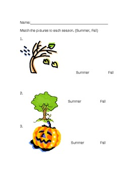 Grade 1 Summer/Fall Seasons Test