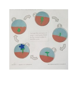 Grade 1 science and literature integration activities and lesson plants