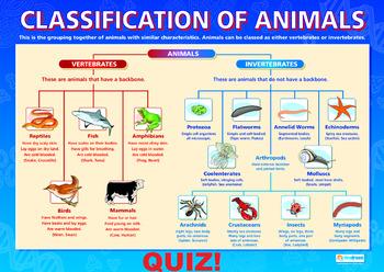 Grade 10 and 11- Classification Taxonomy Nomenclature  QUIZ!