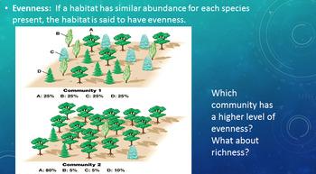 Grade 11 Biology- Diversity of Living Things- Biodiversity & Keystone Species!