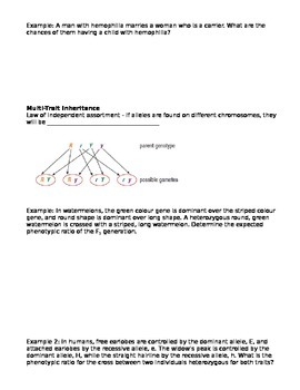 Grade 11 Biology Mendelian Genetics notes student handout