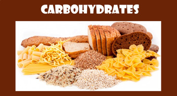 Grade 11 and 12 Animal Structure & Function Unit- Carbohydrates!