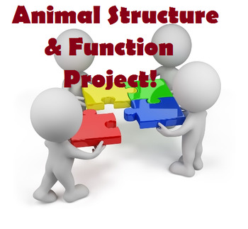 Grade 11 and 12 Animal Structure and Function PROJECT!