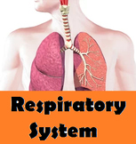 Grade 11 and 12 Animal Structure and Function- Respiratory System !