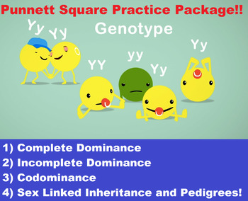 High School Biology- Complete & Incomplete Dominance, Co-dominance & Pedigrees!