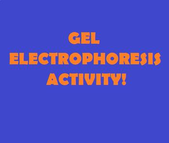 Grade 11 and 12 GEL ELECTROPHORESIS ACTIVITY!