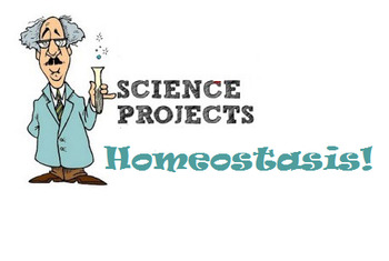 Grade 11 and 12 Homeostasis PROJECT!