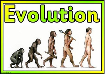 Grade 11 and 12 Introduction to Evolution!