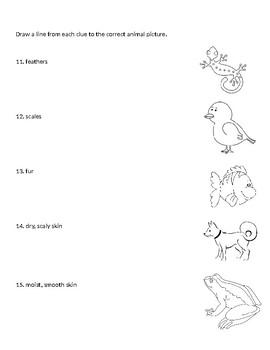 Grade 2- Animals Assessment