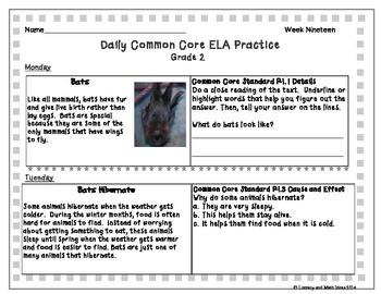 Grade 2 Daily Common Core Reading Practice Week 19 {LMI}