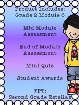 Grade 2 Math Module 6 Mid and End Assessments