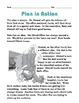 Grade 2 Common Core Reading: Plan in Action