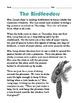 Grade 2 Common Core Reading: The Birdfeeders