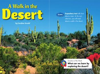 Grade 2 | Smartboard Lesson | Reading Street | Unit 1.4 | A Walk in the Desert