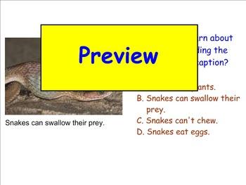 Grade 2 Unit 1 Treasures Review SMART Notebook