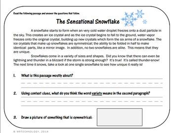 2nd Grade Winter Break Vacation Packet {CCSS Aligned}