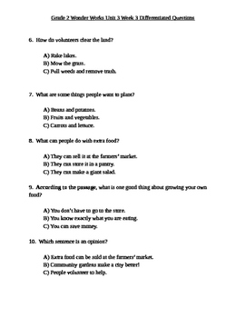 Grade 2 Wonder Works Program Unit 3 Week 3 Differentiated Questions