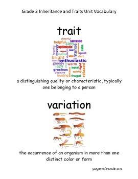 Grade 3 Amplify Science Vocabulary