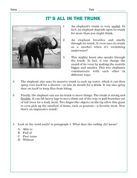Grade 3 Common Core Reading: It's All in the Trunk