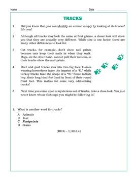 Grade 3 Common Core Reading: Tracks