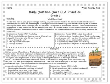 Grade 3 Daily Common Core Reading Practice Week 22 {LMI}