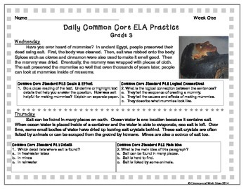 Grade 3 Daily Common Core Reading Practice Weeks 1-5 {LMI}